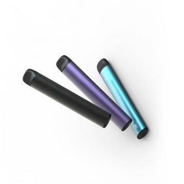New Wholesale Disposable Vape Pen, Empty Disposable Electronic Cigarette