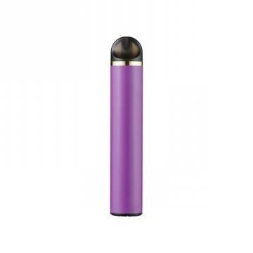 Electronic Cigarette Manufacturer 800 Puffs Disposable Vape 650mAh Battery
